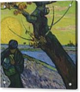 Vincent Van Gogh, The Sower Acrylic Print