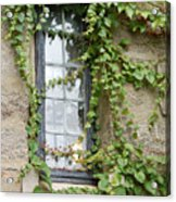 Vine-covered Mysteries I Acrylic Print