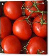 Vine Ripe Tomatoes Fine Art Food Photography Acrylic Print