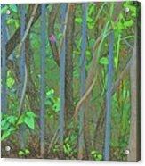 Vines Abstract IIi Acrylic Print
