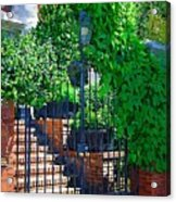 Vines Over Gate Acrylic Print
