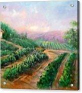Vineyard Haven Acrylic Print
