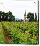 Vineyard In France Acrylic Print