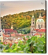 Vineyard Of Prague Acrylic Print