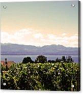 Vineyard On Lake Geneva Acrylic Print
