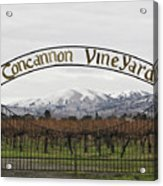 Vineyard Under Snow Acrylic Print