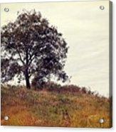Vintage Autumn Acrylic Print