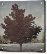 Vintage Autumn Moment Acrylic Print