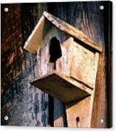 Vintage Birdhouse Acrylic Print