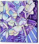 Vintage Blues Acrylic Print