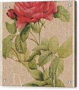 Vintage Burlap Floral Acrylic Print