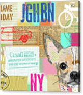 Vintage Collage Chihuahua Acrylic Print