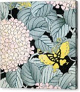 Vintage Japanese Illustration Of A Hydrangea Blossoms And Butterflies Acrylic Print