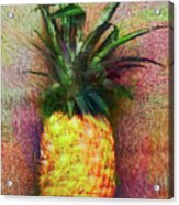 Vintage Pineapple Acrylic Print