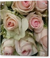Vintage Pink Roses Acrylic Print by Lynn Jackson