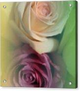 Vintage Roses 2 Acrylic Print