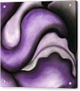 Violet 1 Acrylic Print