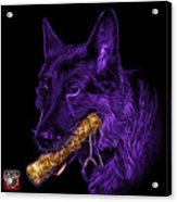 Violet German Shepard And Toy - 0745 F Acrylic Print