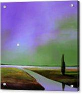 Violet Night Acrylic Print