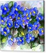 Violets Of Blue Acrylic Print