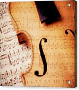 Violin And Musical Notes Acrylic Print