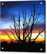 Virden Road Sunset Acrylic Print