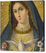 Virgen De La Paloma Acrylic Print
