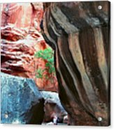 Virgin River Narrows Acrylic Print