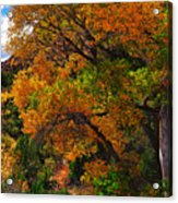Virgin River Triptych Right Panel Acrylic Print