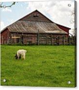 Virginia Farmyard Acrylic Print