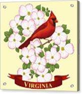 Virginia State Bird Cardinal And Flowering Dogwood Acrylic Print