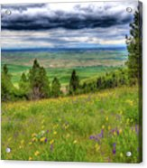 Vision Of Spring Acrylic Print