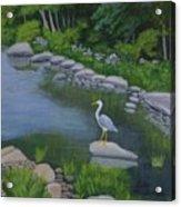 Visiting Heron Acrylic Print