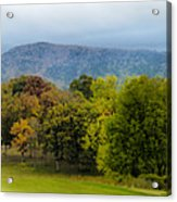 Vista Links Acrylic Print