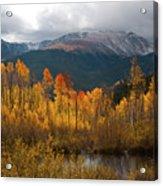 Vivid Autumn Aspen And Mountain Landscape Acrylic Print