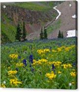 Vivid Colors Of The Colorado Alpine Acrylic Print