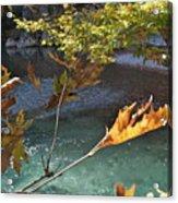 Voidomatis River Acrylic Print