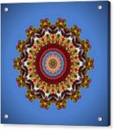 Voladores Kaleidoscope 3 Acrylic Print