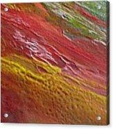 W 036 Acrylic Print