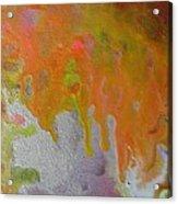 W 050 Acrylic Print
