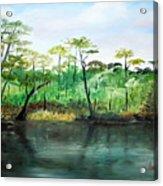 Waccamaw River - Impressionist Acrylic Print