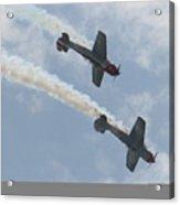 Wafb 09 Yak 52 Aerostar 7 Acrylic Print