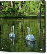 Wagner Vinyard Estate Swans Finger Lakes Lodi Ny Acrylic Print