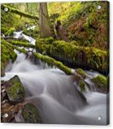 Wahkeena Creek In Green Acrylic Print