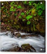 Wahkenna Creek Acrylic Print