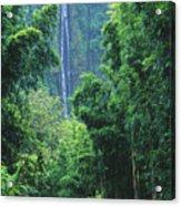 Waimoku Falls Acrylic Print