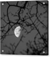 Waning Black And White Acrylic Print
