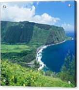 Waipio Valley Lookou Acrylic Print