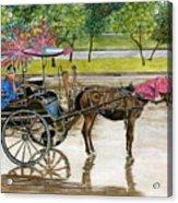 Waiting For Rider Jakarta Indonesia Acrylic Print