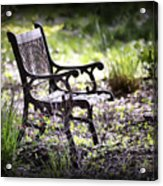 Waiting For You Acrylic Print